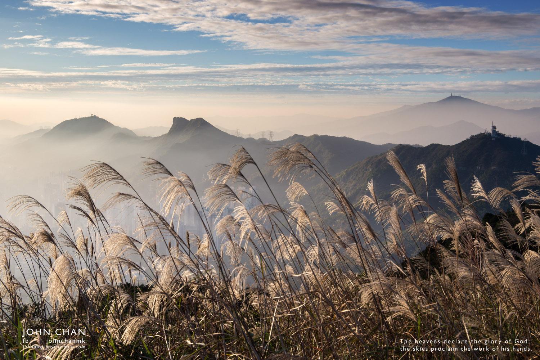 飛鵝山上看芒草 看日落 旅攝文 John Chan Photography